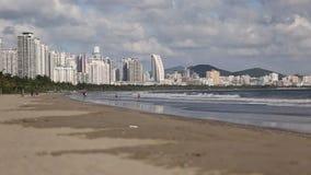 Palmas de coco Isla de Hainan almacen de video