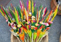 Palmas de Pascua Fotografía de archivo libre de regalías
