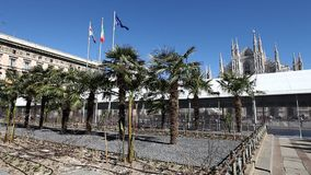 Palmas de Piazza Duomo almacen de metraje de vídeo