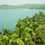Palmas do Oceano Índico e de coco fotografia de stock royalty free
