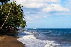 Palmas do oconut do ¡ de Ð no oceano Fotografia de Stock