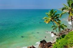 Palmas e praia Fotografia de Stock