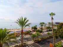 Palmas e praia bonitas em Alicante spain foto de stock royalty free