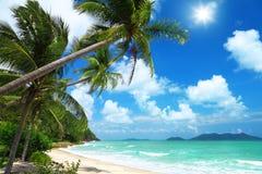 Palmas e praia de coco em Tailândia Fotografia de Stock