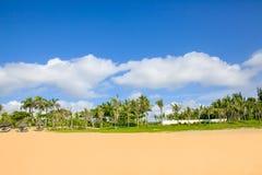 Palmas e praias bonitas de coco sob céus azuis e as nuvens brancas - baía do haitang, hainan, China foto de stock