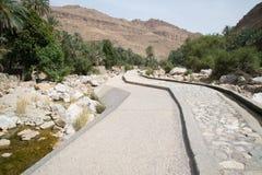Palmas em Wadi Bani Khalid Imagem de Stock