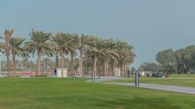 Palmas en el timelapse de MIA Park, situado en un final de los siete kilómetros de Corniche largo en la capital de Qatari, Doha almacen de metraje de vídeo