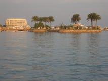 Palmas en la isla. Mar Rojo Imagen de archivo libre de regalías