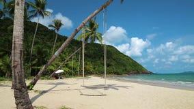Palmas en la playa de la isla hermosa almacen de metraje de vídeo