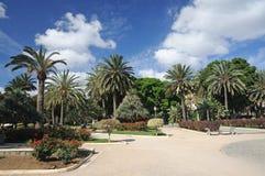palmas las паркуют Испанию Стоковая Фотография