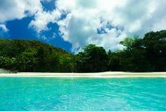 Palmas lujuriantes de la vegetación de la playa tropical Foto de archivo libre de regalías