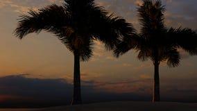 Palmas na rendição tropical da praia 3d ilustração stock