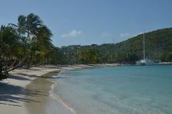 Palmas oblicuo crecidas en la playa del Caribe imágenes de archivo libres de regalías