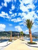 Palmas que decoram o cais do passeio moderno de Porto Montenegro, inundado com o sol brilhante imagens de stock
