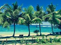 Palmas & ressaca de Samoa Imagens de Stock