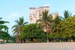 Palmas tropicais com os arranha-céus no fundo sob a luz solar do alvorecer no recurso em Ásia imagem de stock