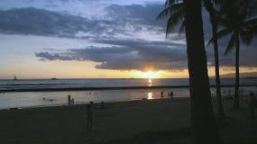 Palmas tropicales en la puesta del sol Fotos de archivo libres de regalías