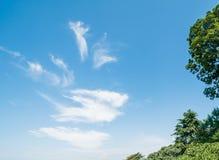 Palmas tropicales y cielo nublado fotos de archivo