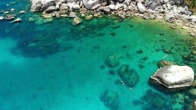 Palmas y piedras tropicales en la pequeña playa Muchas palmas exóticas verdes que crecen en orilla rocosa cerca del mar azul tran almacen de video