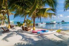 Palmas y playa en la isla del calafate de Caye, Beli imágenes de archivo libres de regalías