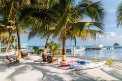 Palmas y playa en la isla del calafate de Caye, Beli imagen de archivo