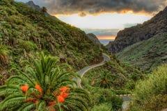Palmas y serpentina cerca del pueblo con las montañas, Tenerife de Masca Foto de archivo libre de regalías