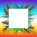 Palmblätter auf Rahmen Lizenzfreie Stockfotografie