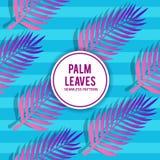 Palmblätter mit Schatten-nahtlosem Muster Lizenzfreie Stockbilder
