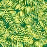 Palmblätter Nahtloser vektorhintergrund floral vektor abbildung