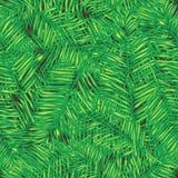 Palmblätter Nahtloser vektorhintergrund floral stock abbildung