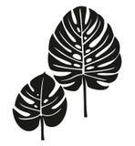 Palmblad Royaltyfri Illustrationer