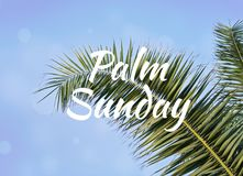 Palmblad mot blå himmel med textpalmsöndag Arkivbild