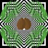 Palmblad och kokosnötter Arkivbild
