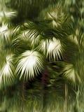 Palmbladabstrakt begrepp Royaltyfri Fotografi