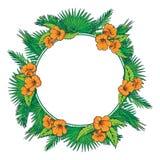 Palmbladen en bloemencirkelkader Royalty-vrije Stock Foto's