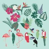 Palmbladen, tropische installaties, bloemen, bladeren en vogels stock illustratie