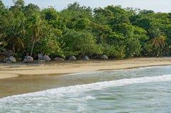Palmbladet halmtäcker paraplyer på en sandig strand Fotografering för Bildbyråer