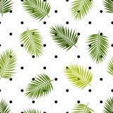 Palmbladkonturer och sömlös modell för prick låter vara tropiskt vektor illustrationer