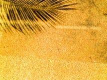 Palmbladskugga på orange sandsten Royaltyfria Bilder