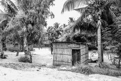 Palmbladwinkel in Mozambique, Afrika stock afbeeldingen