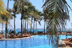 Palmblatt über Pool Lizenzfreie Stockbilder