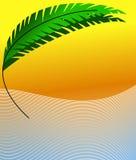 Palmblatt auf Seeküste Stockbild