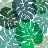 Palmblattmuster Vektorillustration Stockbild