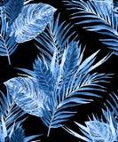 Palmblattparadieshintergrund Lizenzfreie Stockfotografie