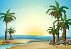 Palme alla spiaggia illustrazione vettoriale