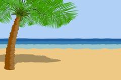 Palme auf der Seeküste lizenzfreie abbildung