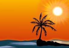 Palme auf kleiner Insel gegen Himmel und Sonne Stockfotos