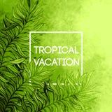 Palme-Blatthintergrund des Aquarells tropischer Tropisches Feriendesign Auch im corel abgehobenen Betrag stock abbildung