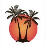 Palme con l'isola al tramonto Fotografie Stock Libere da Diritti