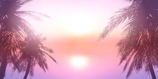 Palme contro un paesaggio dell'oceano di tramonto royalty illustrazione gratis